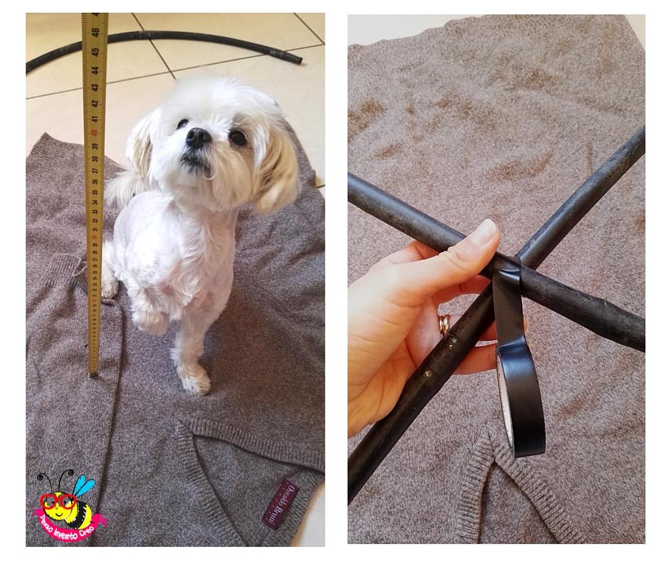 Célèbre come creare una cuccia per il cane o il gatto senza cucire KR19