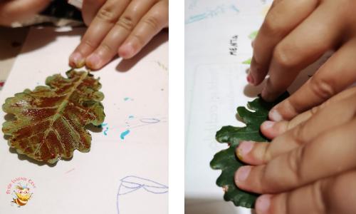 fare le stampe con le foglie